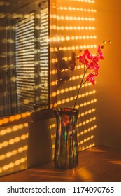 Sunlight from a sunset shining through gaps in window shutters, blinds that are forming patterns on a wall and reflecting in a mirror. On the wood table is a colourful vase and decorative flower.