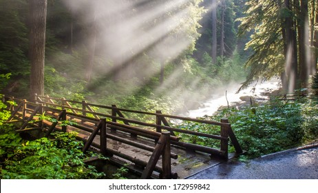 Sunlight through the steam at Sol Duc natural hot springs in Olympic National Park, Washington