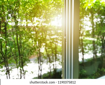 sunlight throughs slider window on green soft leaf plant blurred background.can be used montage for your product and graphic design wallpaper.free space for your text.