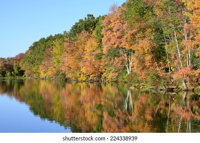 Sunlight-enhanced foliage half reflected on an New England pond