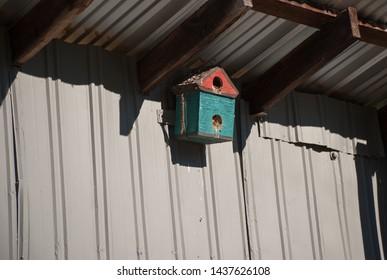 Sunlit blue and red bird feeder