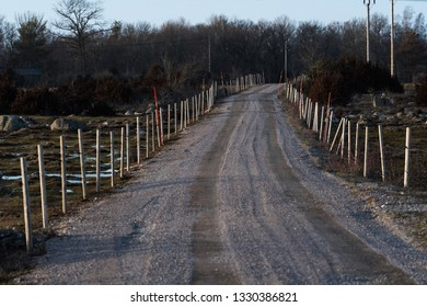 Sunlit gravel road with fence of wooden poles and snow stakes at the swedish island Oland