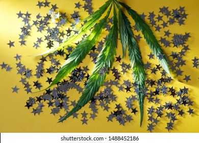Sunlit green cannabis hemp and silver confetti stars on a bright yellow background. Psychotropic substances and medicine. Party and relaxation. Close-up.