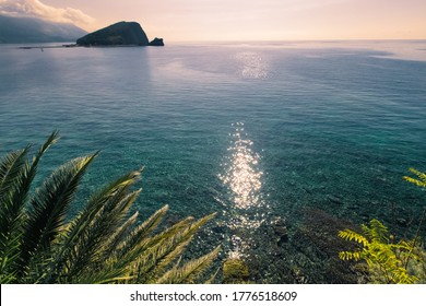 Sunlit path over Adriatic sea. Sun glare on the surface of the sea. Palm leaves on foreground