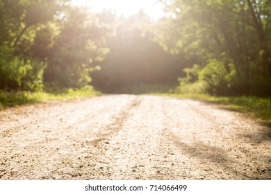 Sunlit road to a forest background, selective focus