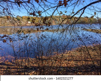 Sunlit water and branches on autumn day