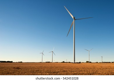 Sunlit wind turbines against a blue sky, in an open agricultural landscape in late afternoon in autumn.