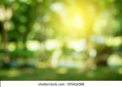 Garden Blur Images Stock Photos Vectors Shutterstock