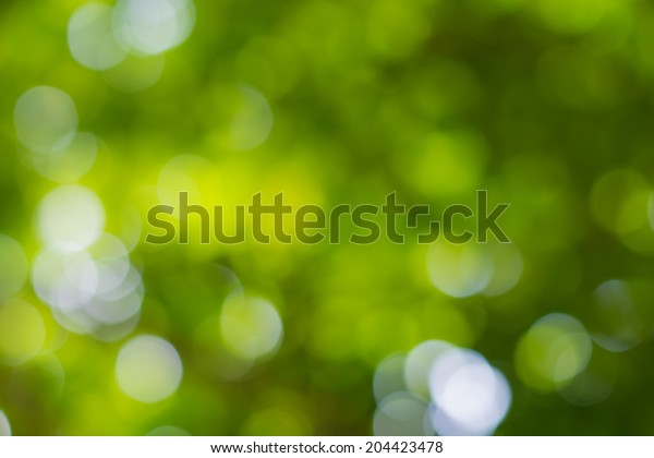 Sunny abstract green nature background, selective focus