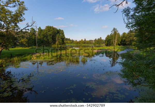 Sunny afternoon Palace Park landscape in Bialowieza with pond, Bialowieza, Poland, Europe
