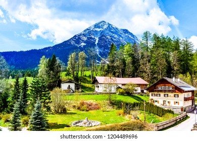 Sunny alpine landscape