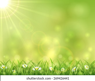 Sunny background with grass and flowers, illustration.