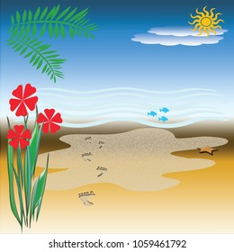 sunny beach illustration  footprints in sand with starfish and flowers