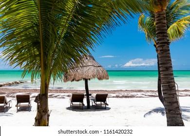 Sunny beach on Isla Holbox, Quintana Roo, Mexico