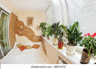 Sunny bedroom on balcony with Window and plants, fish-eye view