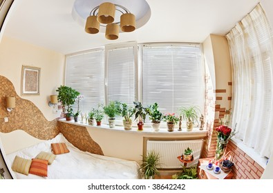 Sunny bedroom on balcony with Window and plants, fish eye view
