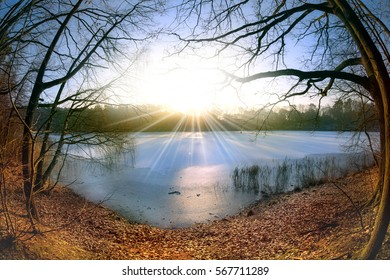 A sunny, cold day in winter at a lake in Brandenburg (Germany)