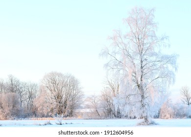 sunny cold winter morning at countryside
