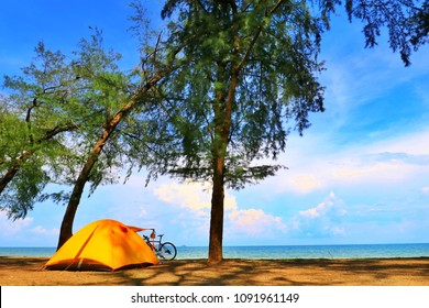 A sunny day at the beach with a yellow camping tent and a bicycle under the shade of green trees, no body. Beautiful background for vacation
