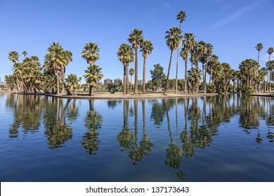 Sunny Day at a City Park in Phoenix, Arizona