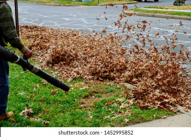 Sunny day, colorful foliage blows the air flow man in work clothes blows off yellow and red fallen autumn leaves in cleaning yard