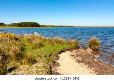 Sunny day at Crowdy Reservoir on Bodmin Moor Cornwall England UK Europe
