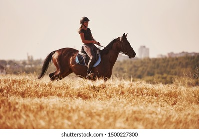Sunny day. Female jockey in black protective helmet riding on her horse in the field.