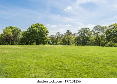 Sunny day in Greenwich park, London UK