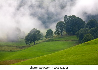 Sunny day in the mountains. Green Mountains in the Black Forest Germany. Fog in the Black Forest