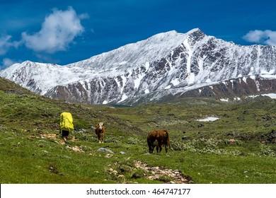 Sunny day on mountain plateau in Tunka range, Siberia