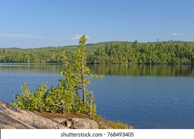 Sunny Day on a North Woods Island on Ogishkemuncie Lake in the Boundary Waters in Minnesota