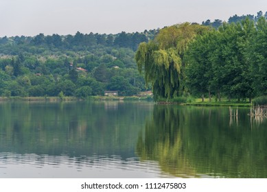 Sunny day on the river with green trees on shore.