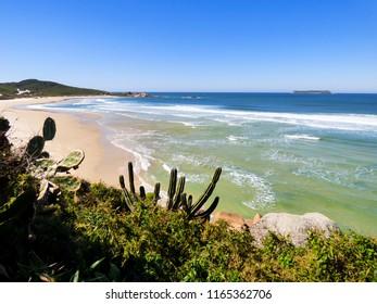 Sunny day at Praia da Galheta (Galheta beach) in the low season - Florianopolis, Brazil