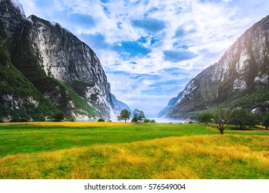 Sunny day scenery by Lysefjord valley, green meadow in canyon between rocks. Lysefjord is popular travel destination for wanderers. Wild nature of Norway, Scandinavia.