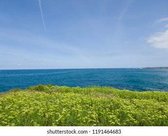 sunny day at the sea bank