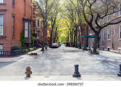 sunny day at the street in Brooklyn, New York