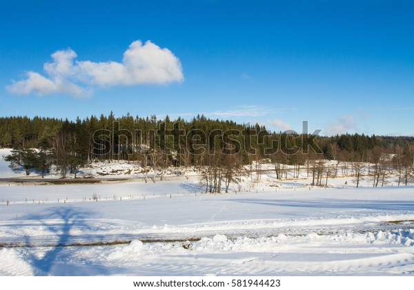 Sunny day in winter countryside.