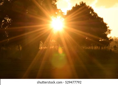 Morning Sun Images, Stock Photos & Vectors | Shutterstock