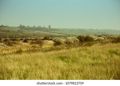 sunny English landscape with Hadleigh Castle on the horizon