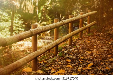 Sunny fence of logs in the Park in autumn, fallen leaves on the ground