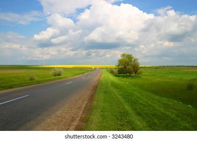 sunny field road