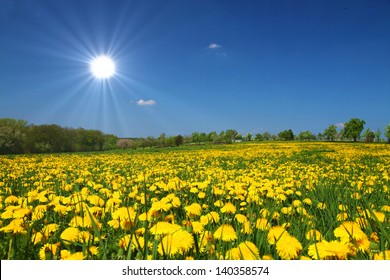 Sunny Weather Images, Stock Photos & Vectors | Shutterstock