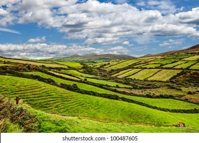 sunny green mountain landscape on Dingle peninsula, Ireland