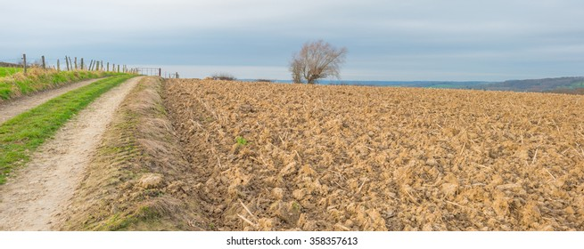 Sunny hilly plowed field in winter