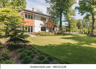 Sunny home outdoor with green lawn yard and patio