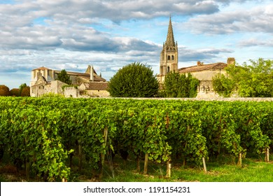 Sunny landscape of bordeaux wineyards in Saint Emilion in Aquitaine region, France on sunny day