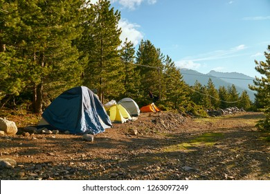 Sunny morning in the camp with tents in Corsica Corse France