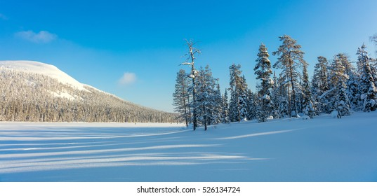 Sunny Panoramic Landscape of Northern Winter Nature - a lot of snow and snow covered trees, beautiful weather, Finland