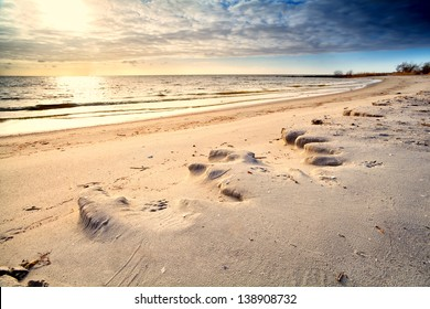 sunny sand beach at North sea before sunset, Friesland, Netherlands