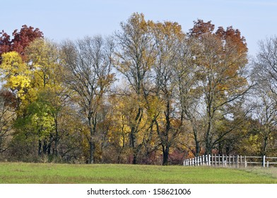 Sunny saturated autumn color trees with fence